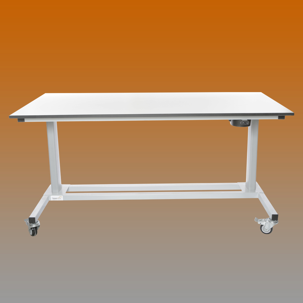 1500mm 2 leg electric height lab table for Table th tf 00 02